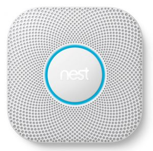 nest on white background